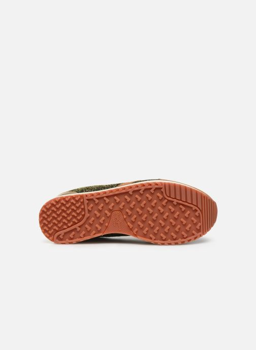 Trainers Pepe jeans Zion Lux Brown view from above