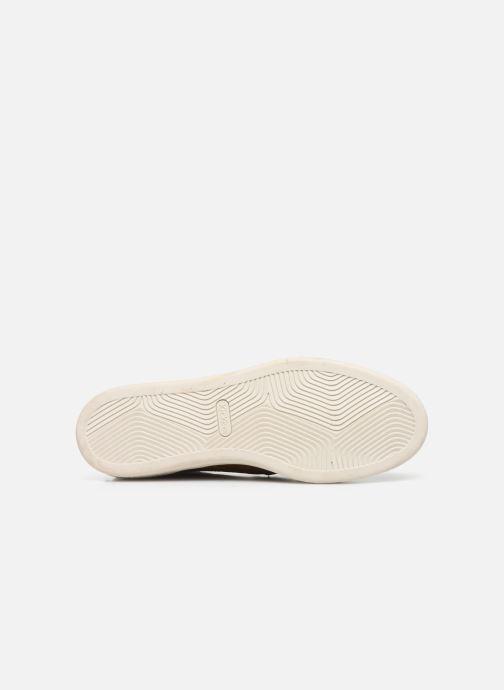 Sneakers Kickers Sanper Marrone immagine dall'alto