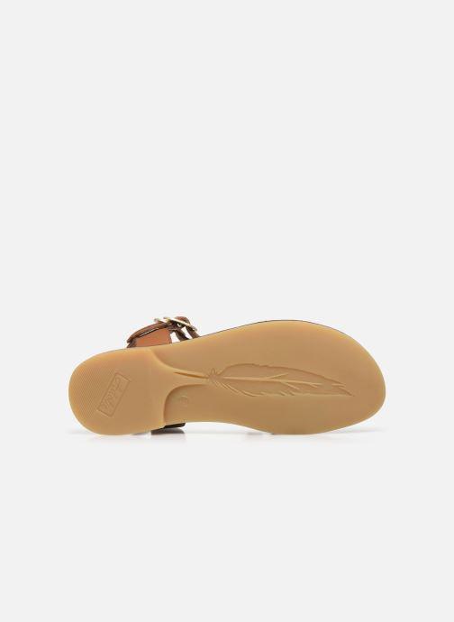 Sandales et nu-pieds Adolie Lazar Megh Marron vue haut