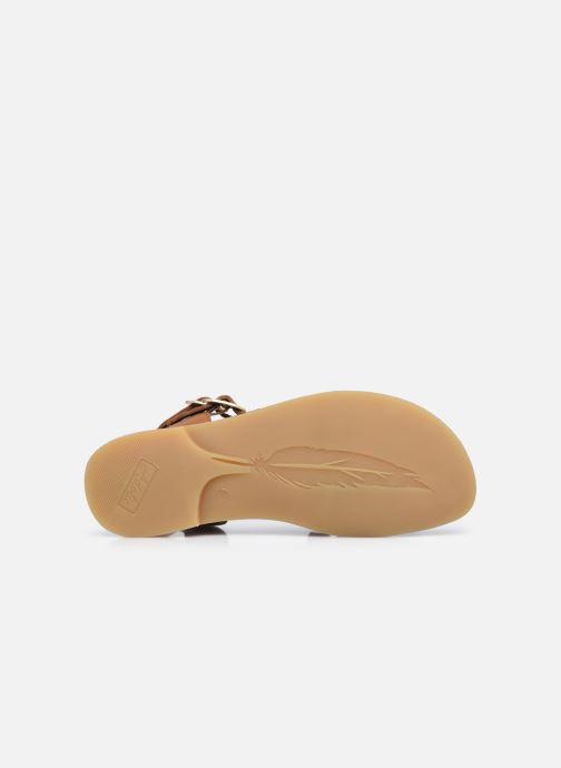 Sandali e scarpe aperte Adolie Lazar Megh Marrone immagine dall'alto