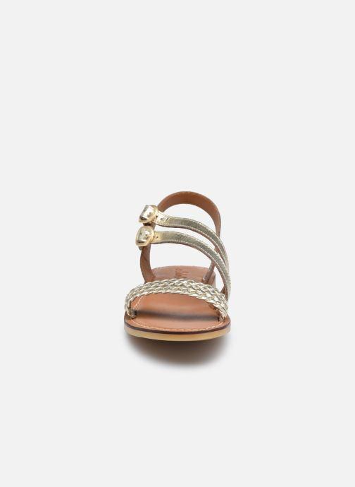 Sandales et nu-pieds Adolie Lazar Megh Or et bronze vue portées chaussures