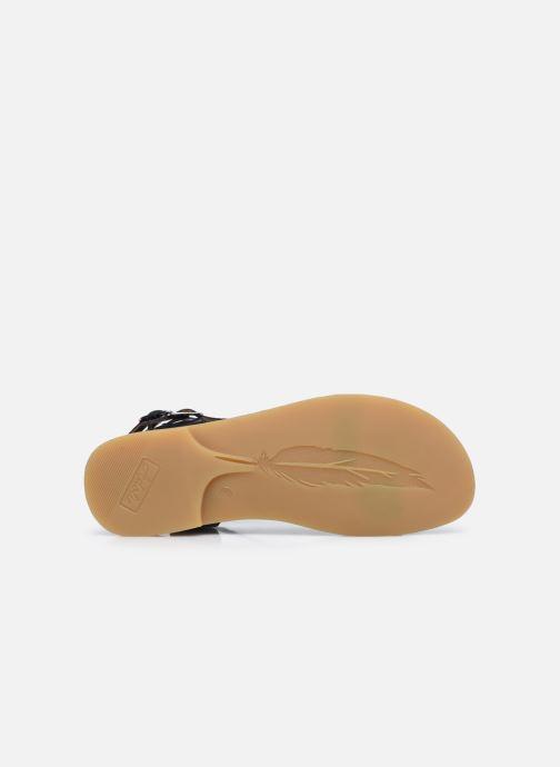 Sandales et nu-pieds Adolie Lazar Bi Stripes Bleu vue haut