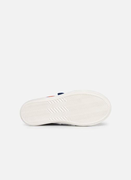 Sneakers Acebo's Basket 5324 Azzurro immagine dall'alto