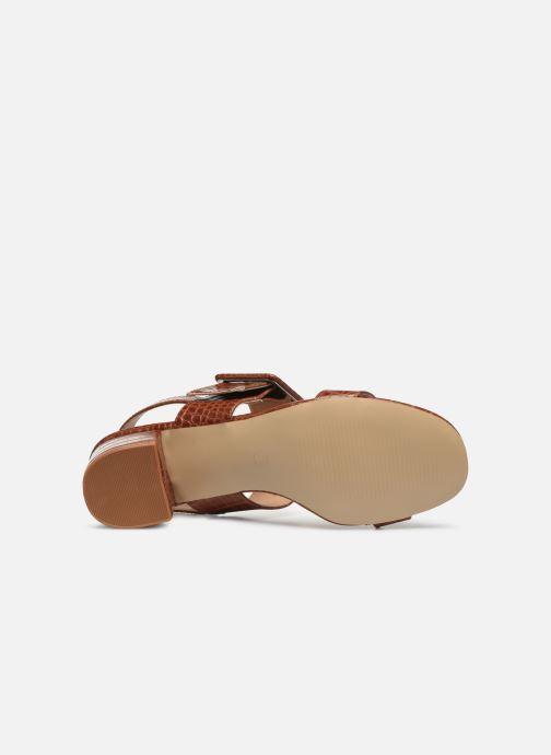 Sandali e scarpe aperte I Love Shoes CACTOS Marrone immagine dall'alto