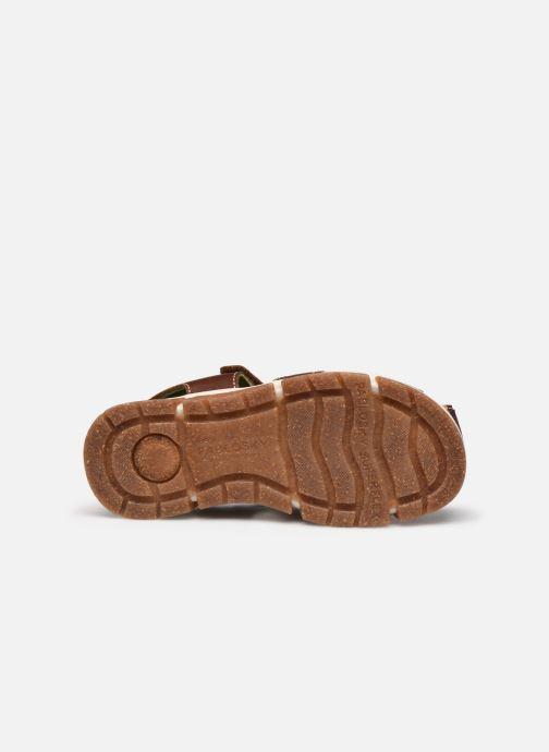 Sandales et nu-pieds Pablosky Sandales Marron vue haut