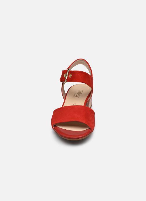 Sandales et nu-pieds Gabor MAHINE Rouge vue portées chaussures