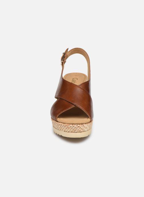 Sandales et nu-pieds Gabor ANKA Marron vue portées chaussures