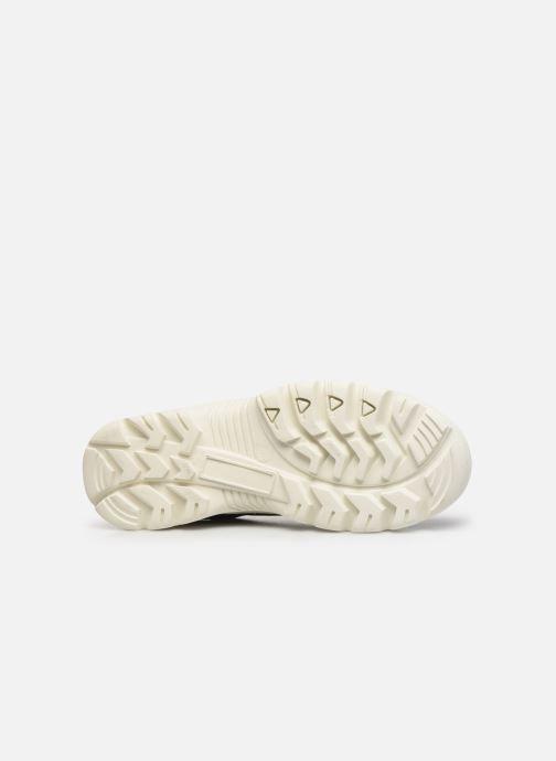 Sneakers Shoe the bear ICEMAN TOE CAP Zwart boven