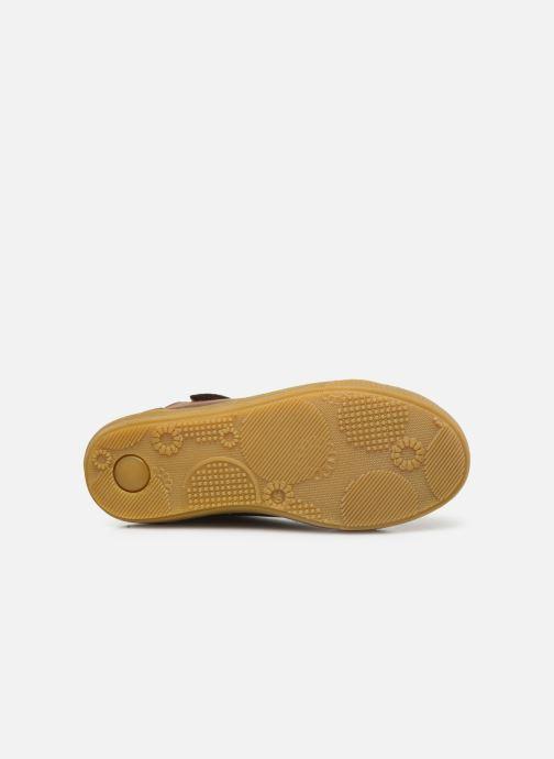Sneakers Kickers Sirena 2 Brun se foroven