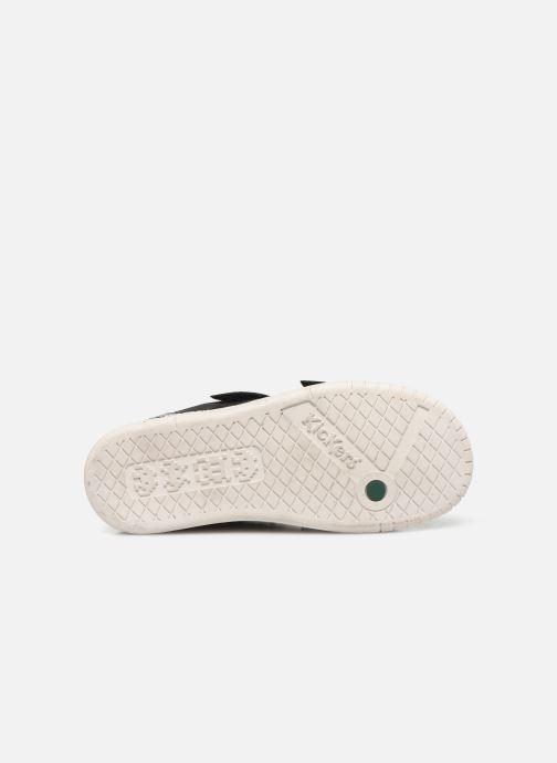 Sneaker Kickers Wizz schwarz ansicht von oben