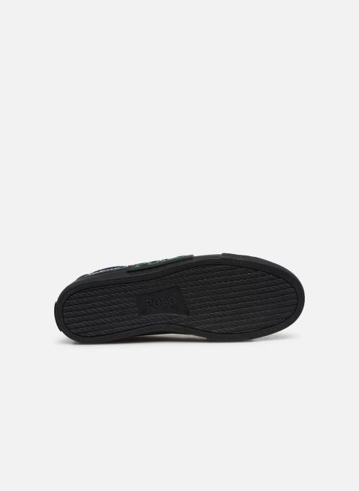 Baskets Polo Ralph Lauren Solomon Ii-Sneakers-Vulc Multicolore vue haut