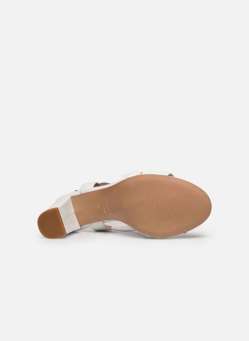 Sandali e scarpe aperte COSMOPARIS VUKO Bianco immagine dall'alto