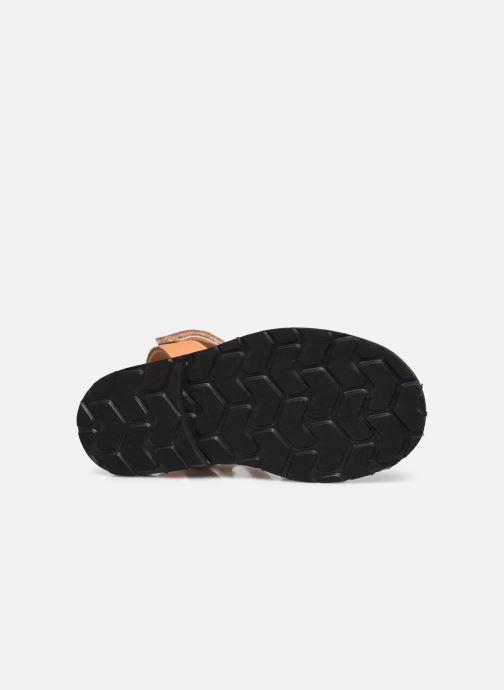 Sandali e scarpe aperte Minorquines Avarca Velcro Marrone immagine dall'alto