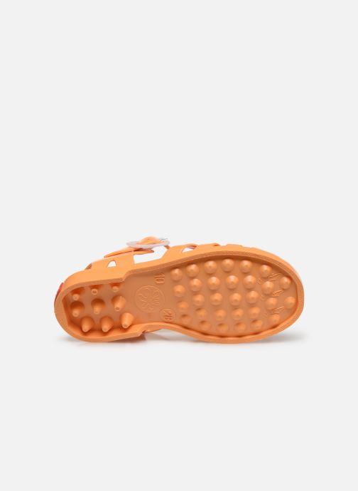 Sandalias Tinycottons Jelly Sandals Naranja vista de arriba