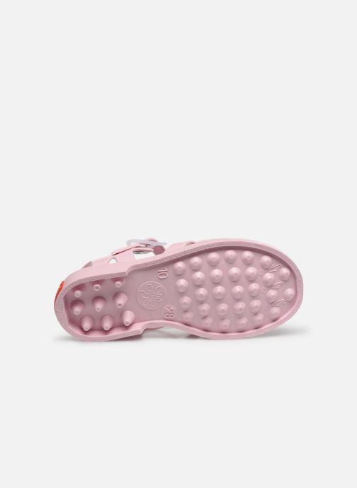 Sandali e scarpe aperte Tinycottons Jelly Sandals Rosa immagine dall'alto