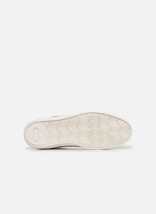 Baskets Roadsign DOMAL Blanc vue haut