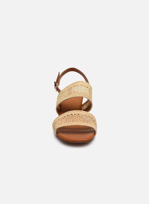 Sandales et nu-pieds Clergerie LEANE Beige vue portées chaussures