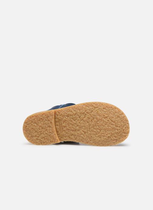 Sandali e scarpe aperte Cendry Leon Azzurro immagine dall'alto