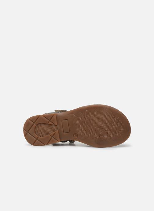 Sandales et nu-pieds Little Mary Lilyrose Or et bronze vue haut