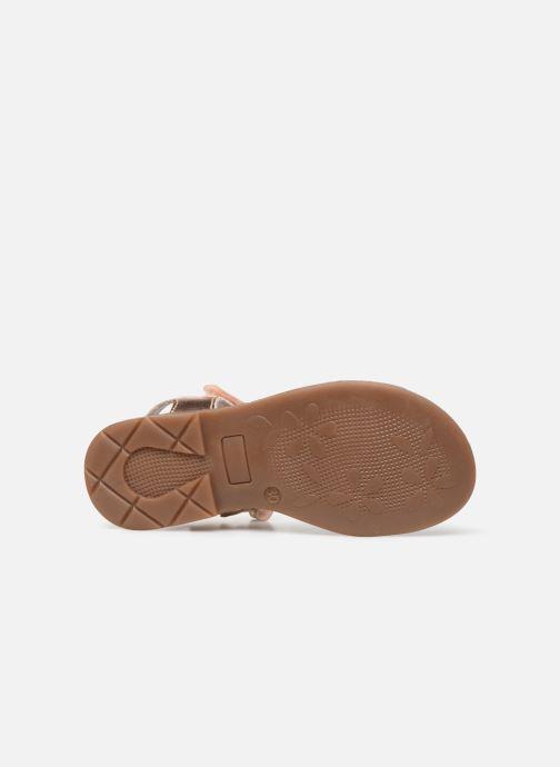 Sandali e scarpe aperte Little Mary Lilyrose Rosa immagine dall'alto