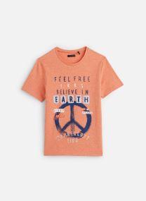 Vêtements Accessoires T-shirt MC XQ10173
