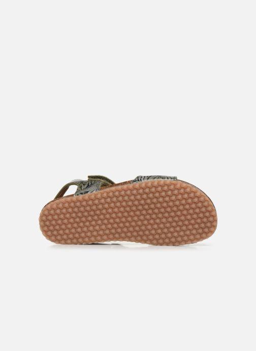 Sandali e scarpe aperte PèPè Sandales-Jungle Verde immagine dall'alto
