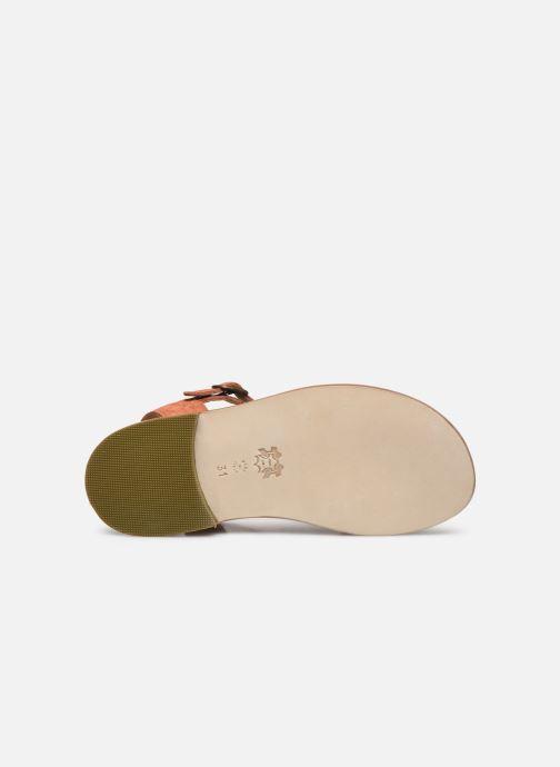 Sandali e scarpe aperte PèPè Sandales-Terra/Oro/Confetto Multicolore immagine dall'alto
