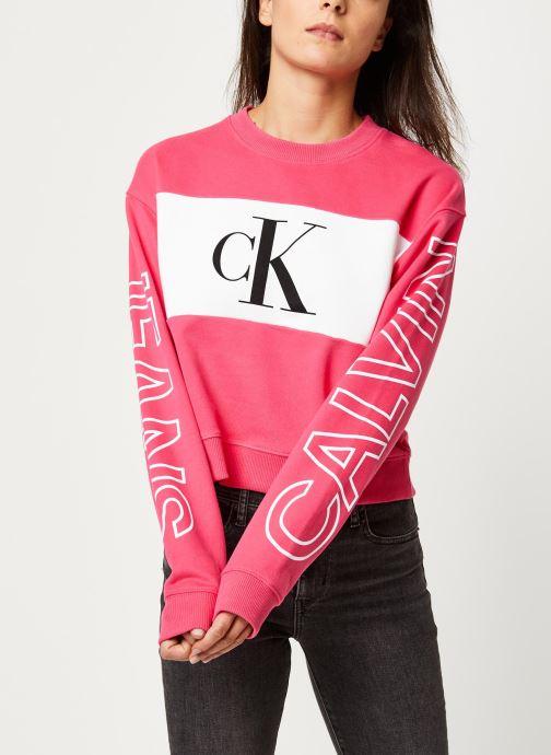 Vêtements Accessoires Blocking Satement Logo Crew Neck