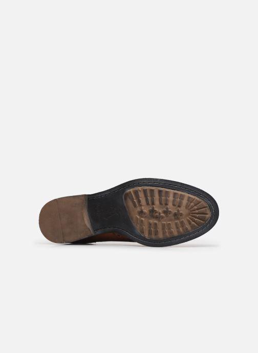 Zapatos con cordones Pepe jeans Hackney Brogue Marrón vista de arriba