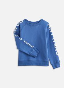 Sweatshirt X15191