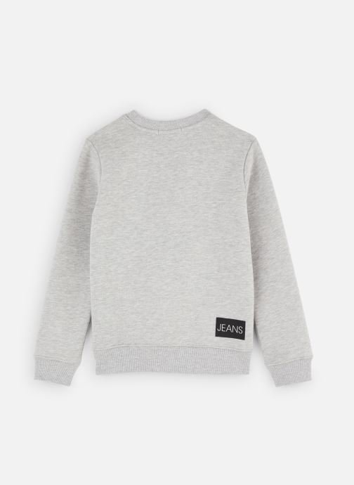 Vêtements Calvin Klein Sweatshirt Institutional Gris vue bas / vue portée sac