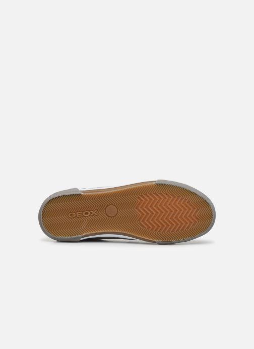 Sneaker Geox U KAVEN U026MC grau ansicht von oben
