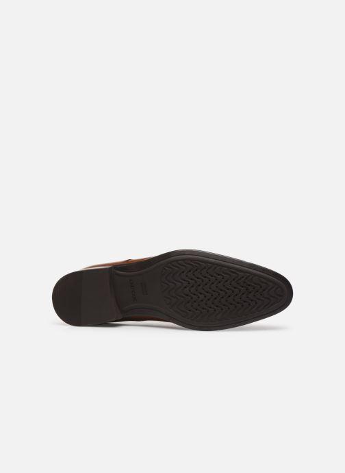 Chaussures à lacets Geox U IACOPO U029GC Marron vue haut