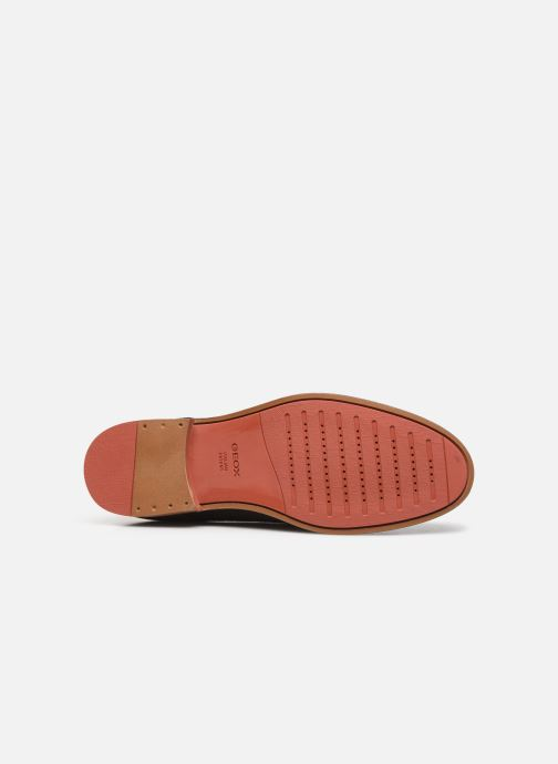 Lace-up shoes Geox U BAYLE Brown view from above