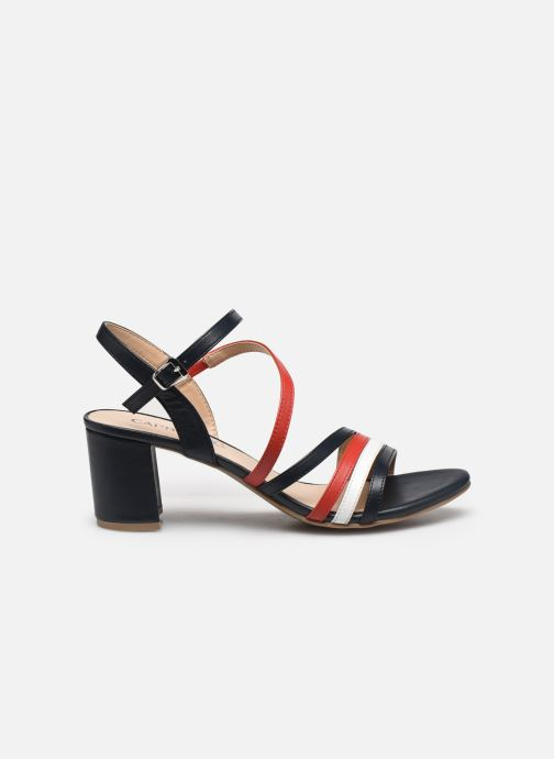 Sandali e scarpe aperte Caprice Nima Multicolore immagine posteriore
