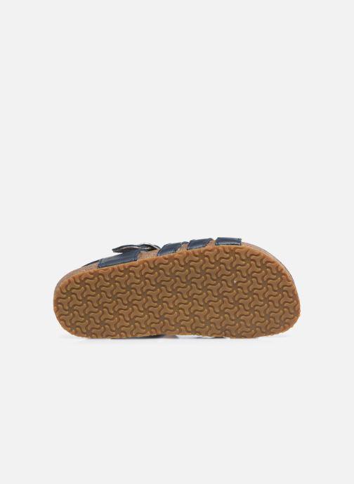 Sandali e scarpe aperte Bopy Eberny Azzurro immagine dall'alto