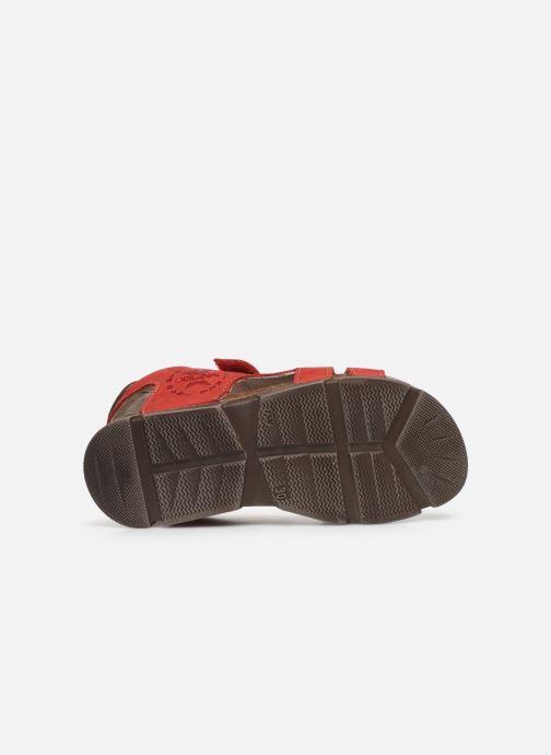 Sandali e scarpe aperte Bopy Erevol Rosso immagine dall'alto