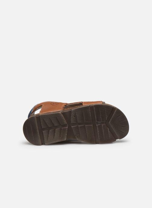 Sandali e scarpe aperte Bopy Espadon Marrone immagine dall'alto