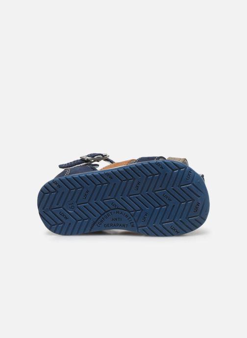 Sandali e scarpe aperte Bopy Zigoto Azzurro immagine dall'alto