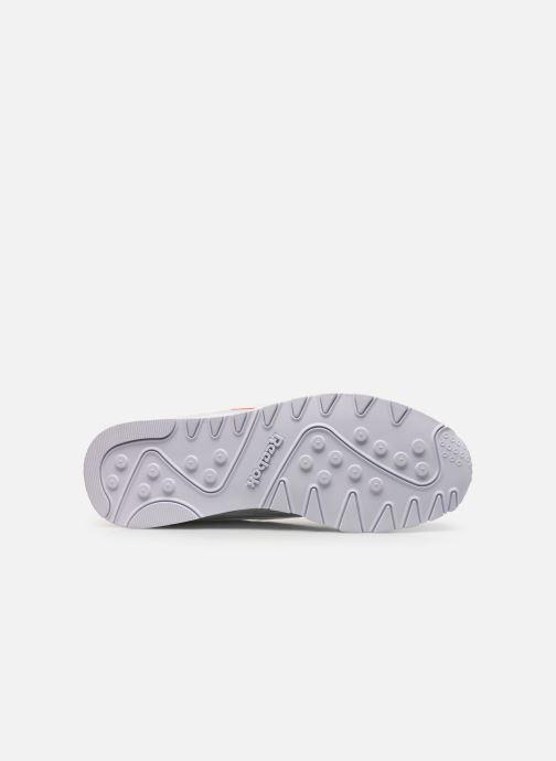 Sneaker Reebok Cl Nylon W weiß ansicht von oben