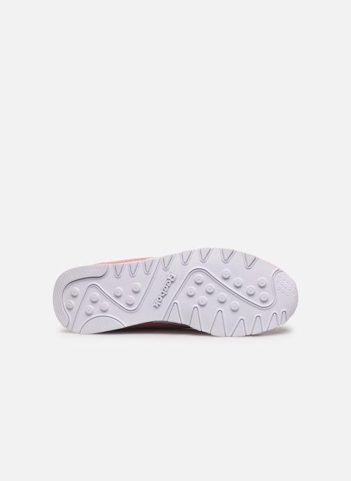 Sneakers Reebok Cl Nylon W Rosa immagine dall'alto