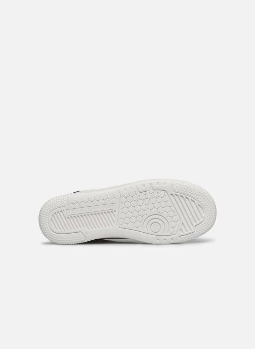 Baskets Tommy Hilfiger Low Cut Lace-Up Sneaker Rayé Blanc vue haut