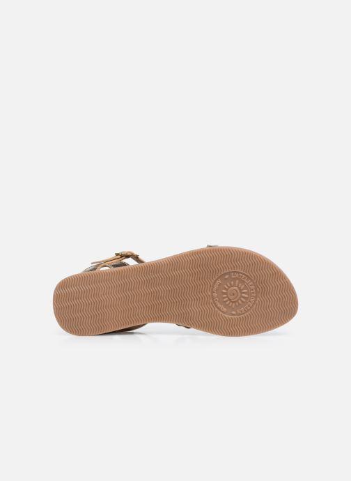 Sandales et nu-pieds L'Atelier Tropézien Sandales IL108E Marron vue haut