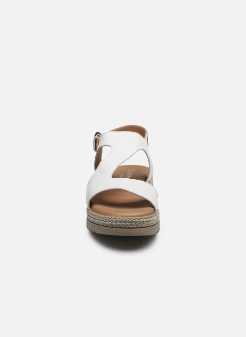 Sandali e scarpe aperte Dorking Went D8234 Bianco modello indossato