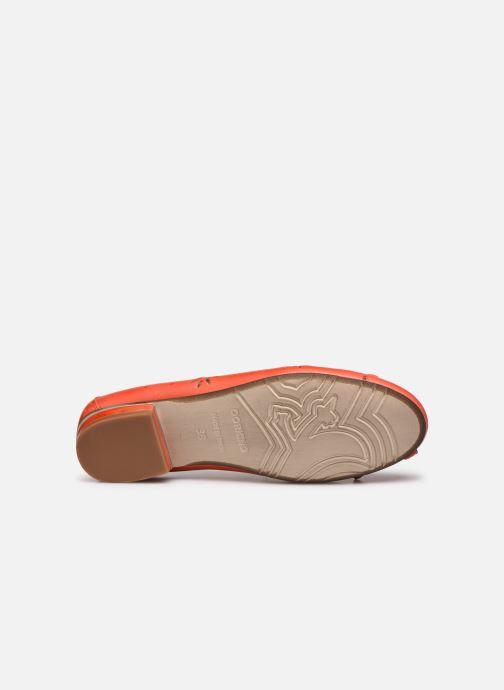 Ballerines Dorking Irem 8119 Orange vue haut