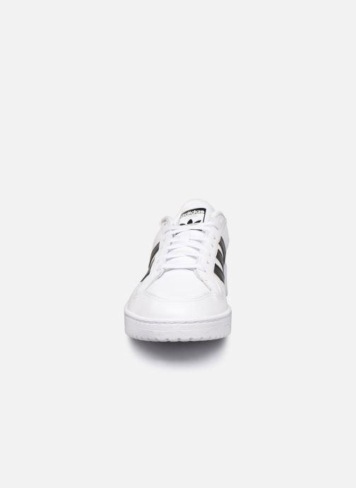 Baskets adidas originals Modern 80 Eur Court Blanc vue portées chaussures