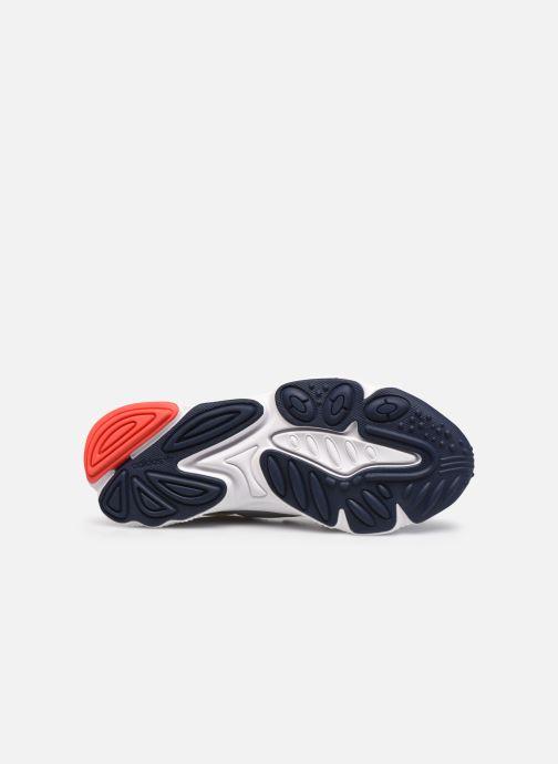 Sneaker adidas originals Ozweego grau ansicht von oben
