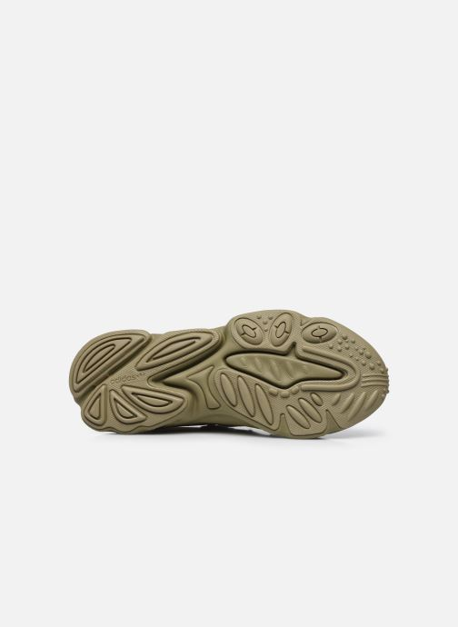 Sneaker adidas originals Ozweego grün ansicht von oben
