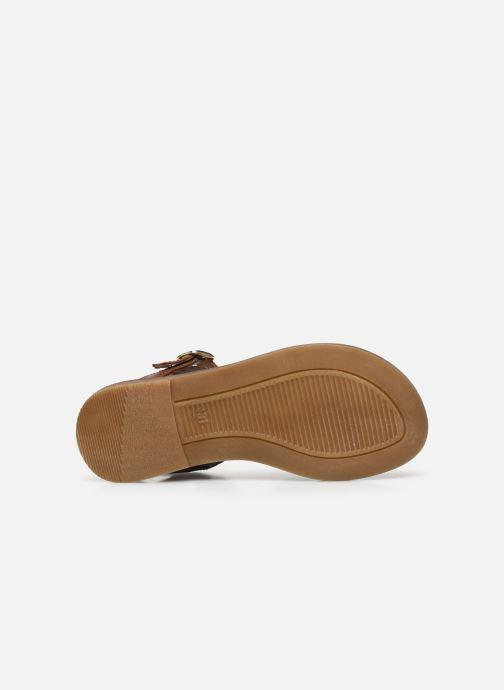 Sandali e scarpe aperte Romagnoli Sandales 5758 Multicolore immagine dall'alto