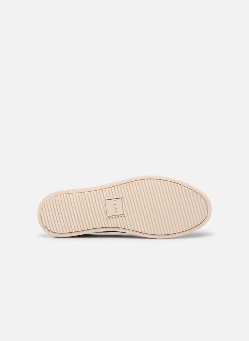 Sneakers Clae Bradley Knit Azzurro immagine dall'alto